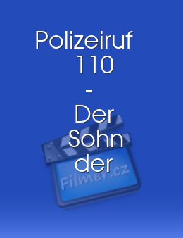 Polizeiruf 110 - Der Sohn der Kommissarin download
