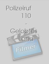 Polizeiruf 110 - Gelobtes Land download