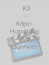 K3 - Kripo Hamburg: Auf dünnem Eis download