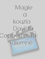 Magie a kouzla Davida Copperfielda: Tajemné síly download