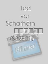 Tatort - Tod vor Scharhörn download