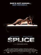 Splice download