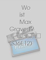 Tatort - Wo ist Max Gravert? download
