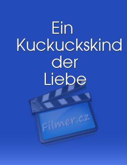 Ein Kuckuckskind Der Liebe 2005 Tv Film Filmercz