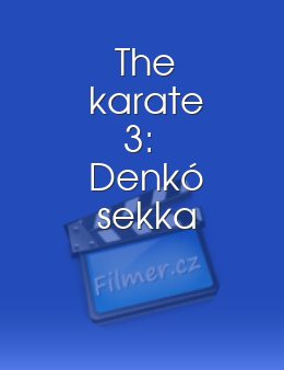 The karate 3 Denkó sekka