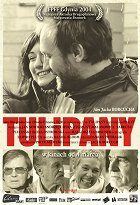 Tulipany download