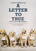 A Letter to True download
