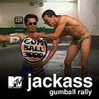Jackass: Gumball Rally download