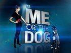 Buď já nebo pes