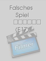 Wilsberg - Falsches Spiel download