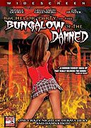 Bachelor Party in the Bungalow of the Damned download