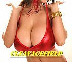Cleavagefield