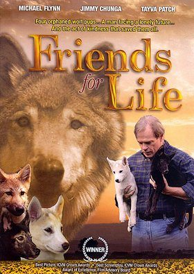 Friends for Life download