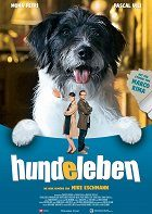 Hundeleben download