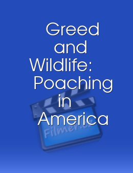 Greed and Wildlife Poaching in America