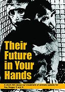 Their Future In Your Hands