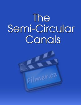The Semi-Circular Canals