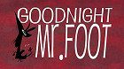 Goodnight, Mr. Foot download