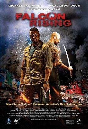 Falcon Rising download
