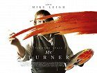 Mr. Turner download