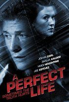 A Perfect Life download