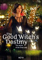 The Good Witchs Destiny