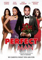 The Perfect Man download