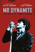 Mr. Dynamite: The Rise of James Brown download