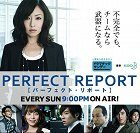 Perfect Report download