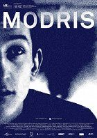 Modris download