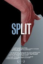 Split download