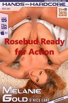 Rosebud Ready for Action