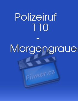 Polizeiruf 110 - Morgengrauen download