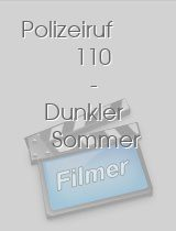 Polizeiruf 110 - Dunkler Sommer download