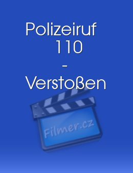 Polizeiruf 110 - Verstoßen download