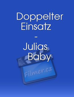 Doppelter Einsatz - Julias Baby download