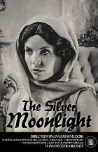The Silver Moonlight