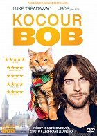 Kocour Bob download