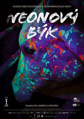 Neonový býk download