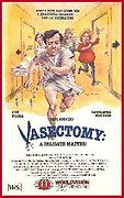 Vasectomy A Delicate Matter