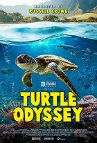 Film Turtle Odyssey 2019 720p BluRay x264 AAA mkv