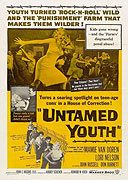 Untamed Youth