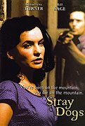 Stray Dogs download