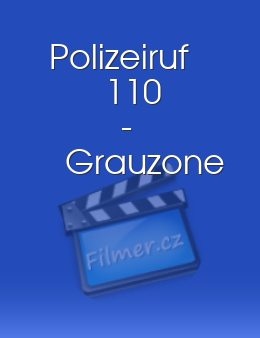 Polizeiruf 110 - Grauzone download