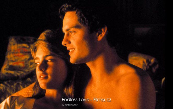 Endless Love download