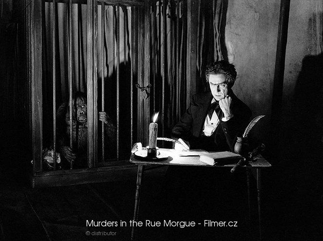 Murders in the Rue Morgue download