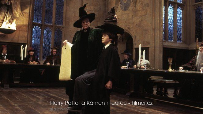 Harry Potter a Kámen mudrců download