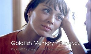Goldfish Memory download