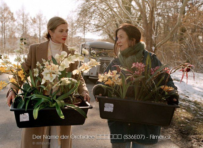 Tatort Der Name der Orchidee download