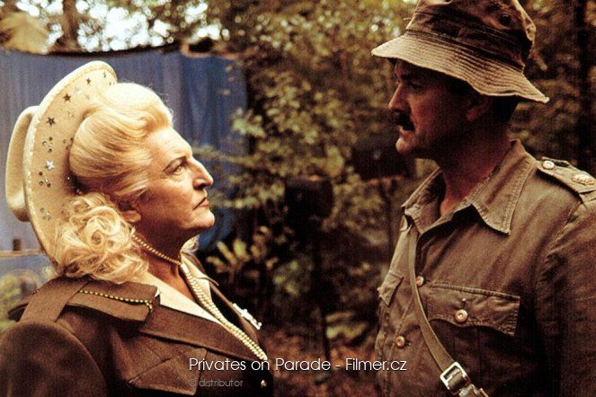 Privates on Parade download